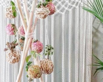 Kokedama- Succulents & Planters- Dorm Decor- Gift for her~ Bohemian Furniture~ Indoor Gardening~ Wedding favors- decorative centerpieces