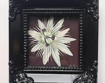 Little Passion Flower gouache Trinket painting