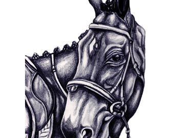 Horse & Bridle Pencil Illustration- Limited Edition Print