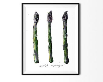Asparagus Print, Asparagus Art, Food Illustration, Kitchen Decor, Plant Illustration, Vegetable Print, Food Print, Art for Kitchen, food art