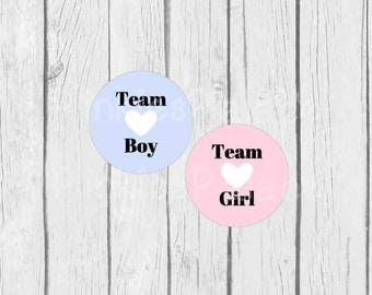 Gender Reveal Stickers Baby Boy Baby Girl Team Girl Team Boy Gender Party - Set of 24