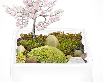 ZEN TREE GARDEN - zen garden, air plant terrarium, feng shui terrarium, buddha, terrarium, terranium, buddha, moss terrariums, gifts