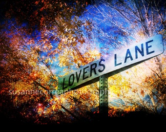 Lovers Lane Street Sign, Trees, orange, Autum, Fall, Las Vegas 12x18