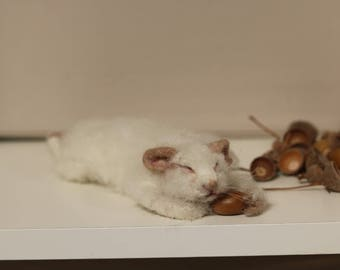 Now sold...little Needle felted sleeping mouse..!!..now sold