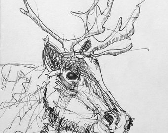 Caribou in Ink, Naturally