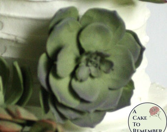 "Two 3"" edible cake succulents with wired flat petals for rustic wedding cake toppers, modern wedding cakes, or autumn cake toppers."
