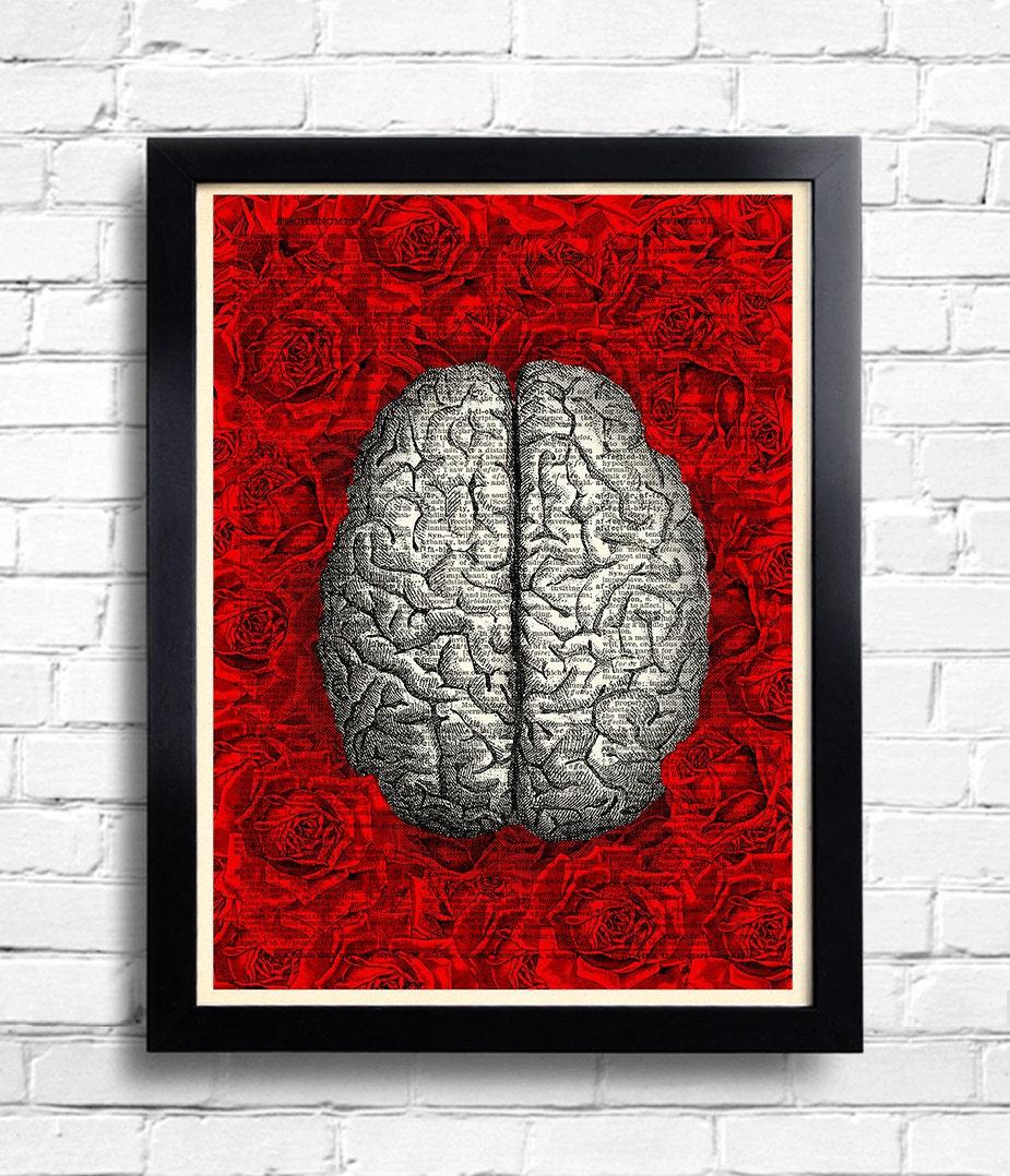 Menschliche Gehirn Anatomie Kunstdruck Rose Rosen Blumen, menschliche Gehirn Wörterbuch Kunstdruck/Poster, Gehirn-Dekor, Gehirn-Poster, kühles ...