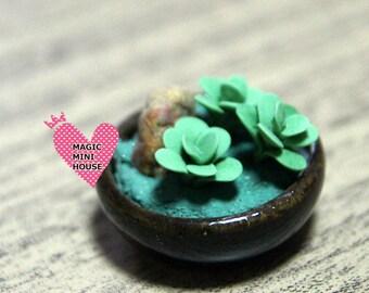 Dolls House Miniature Succulent Plant