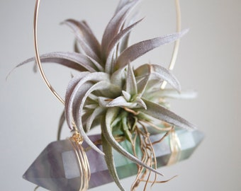 Hanging Planter, Air Plant Crystal Swing, Green and Purple Fluorite Display, Limited Edition, Gift For mom, Boho Wall Decor, Mo