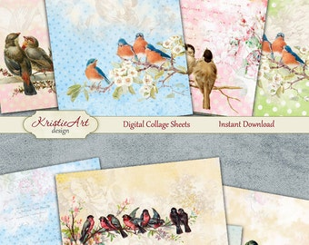 75% OFF SALE Summer Birds - Digital Collage Sheet Digital Cards C093 Printable Download Image Tags Digital Image Atc Cards ACEO Bird Cards