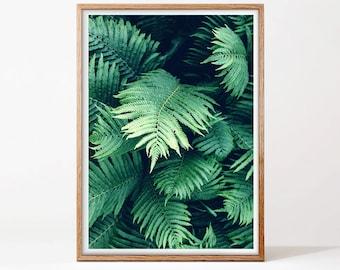 Botanical Wall Art, Fern Print, Digital Download, Printable Photo, Jungle Print, Tropical Wall Art, Greenery Poster, Modern Home Decor