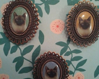 Set of three kitten ca-meow brooches