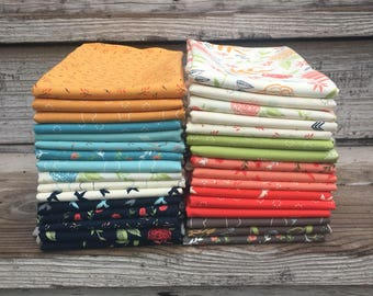 INSTOCK 1/2 yard bundle of Creekside  by Sherri and Chelsi from Moda -1 yard