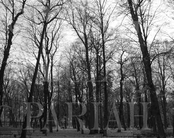 Siberian Odyssey 3333 by LuluP, Photographic Study in Black & White, Unframed Print