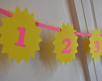First year picture photo banner, You are My Sunshine, First Birthday banner Happy Birthday Yellow Sun and Hot Pink