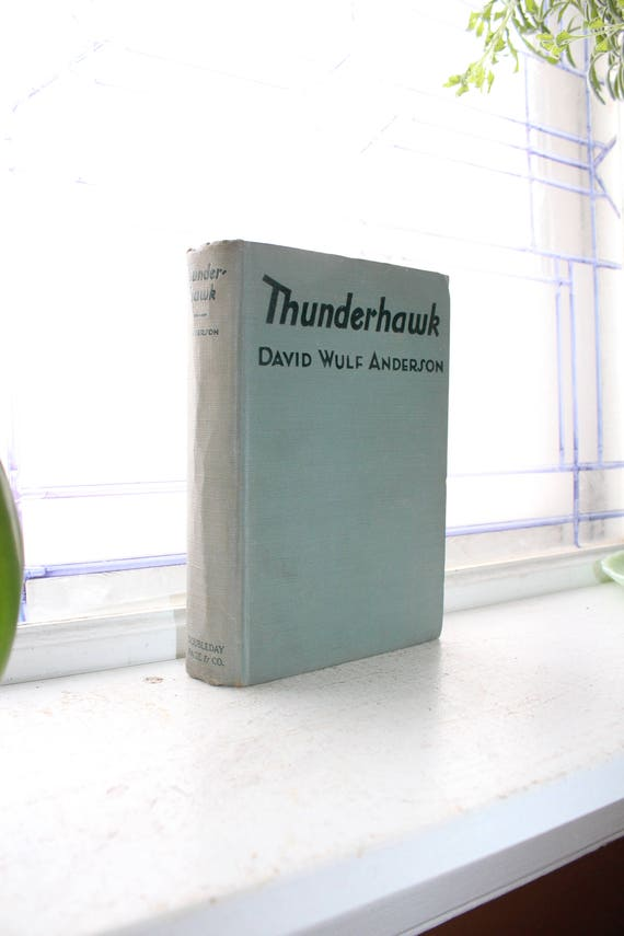 Vintage 1926 Book Thunderhawk by David Wulf Anderson First Edition