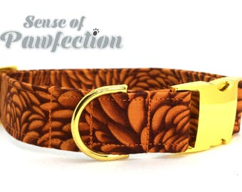 Orange Petals Dog Collar