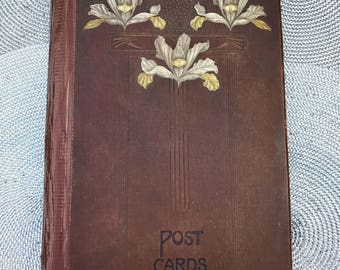 Art Nouveau Empty Postcard Album Large Brown Hardback Book with Coloured Iris Flower Design Holds 196-392 Cards Bookplate Dated 1907