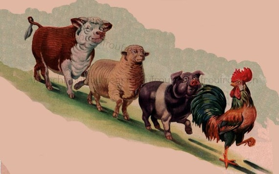 Vintage Farm Animals Rooster Pig Cow Sheep Illustration