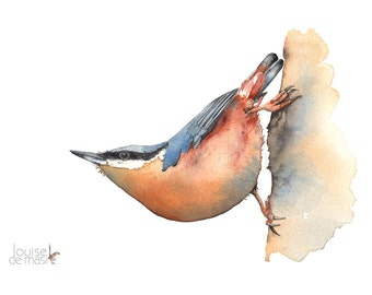 Original Watercolour Painting Nuthatch, Original Bird Painting, Original Watercolour Bird, Original Nuthatch Watercolor Painting
