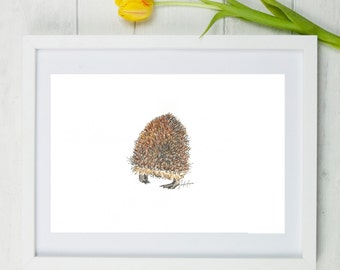 Hedgehog art, hedgehog drawing, hedgehog painting, hedgehogs, hedgehog, woodland animal, british wildlife, small animal art