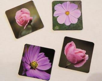 Flower magnets, gift for mom, flower decor, kitchen decor, kitchen magnets, flower magnet, flower art, flower kitchen art, mother's day gift