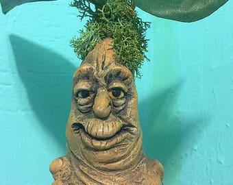 Mandrake OOAK in cardboard pot