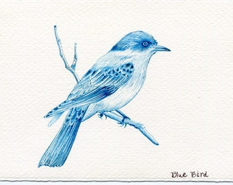 Blue Bird: One of a kind original drawing