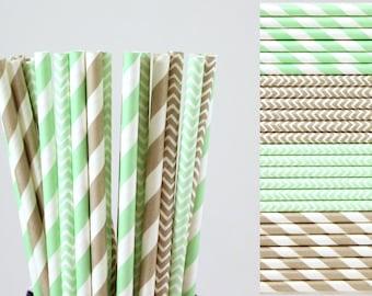 Mint Green and Grey Paper Straw Mix-Mint Green Straws-Gray Straws-Striped Straws-Chevron Straws-Zigzag Straws-Mason Jar Straws-Party Straws