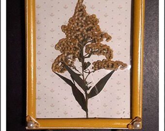 Frame Boho Collection 'Ripon flowers' - mustard and flower