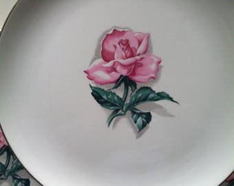 Taylor-Smith-Taylor gold trim rose plates set of 5