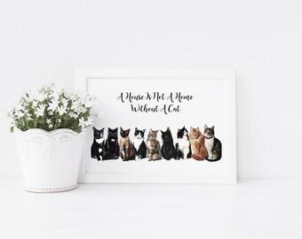 Cat Print - pet portrait - cat portrait - cat art print - kitten print -  a house is not a home without a cat - ideal for cat lovers