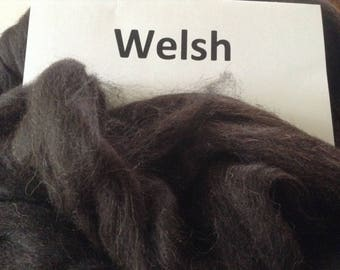 Black Welsh Mountain roving - great for spinning or felting