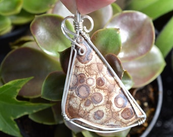 Wire Wrapped Bird's Eye Rhyolite Pendant in Argentium Silver, Handmade Orbicular Brown Cabochon Necklace