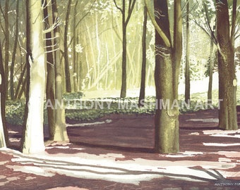 Woodland Light. Limited edition giclée print, professionally printed in the UK using inks and paper of archival quality.