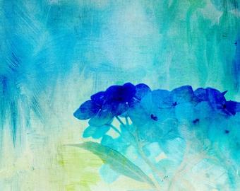 Painted Hydrangeas  Fine Art Print digitally painted nature photograph - aqua turquoise cobalt blue wall decor, spring decor,summer decor