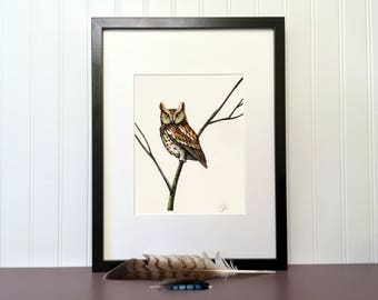 Eastern Screech-Owl, 10 x 8 inches, Handmade original drawing with color marker, Bird of prey collection
