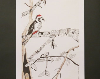 Woodpecker illustration  print