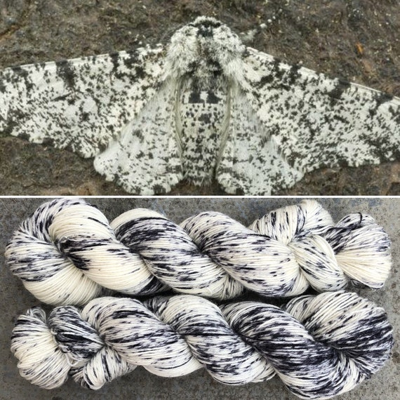 Peppered Moth, BFL nylon blend speckle dyed indie sock yarn
