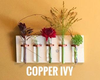 5 Test Tube Hanging Bud Vase with Gorgeous Polished Copper Brackets