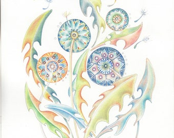 "11"" x 8"" . NOT A PRINT ..Original Painting Dandelions... No.2  OOaK Handpainted ..Watercolour..Succulent"