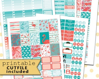 PRINTABLE Planner Stickers/June Monthly Kit/Planner Stickers for use with Erin Condren Planner/Monthly Planner Sticker Kit/Instant Download