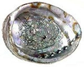 Abalone Smudge Bowl For Cleansing