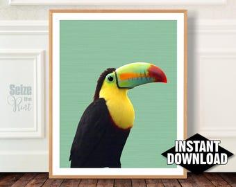 TOUCAN ART, Toucan Art Print, Toucan Wall Art, Tropical Toucan Art, Green Toucan Art, Toucan Poster, Bird Art, Mint Green, Tropical Wall Art