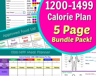 1200-1499 Calories Diet Planner - 5 Page PDF BUNDLE PACK: Container Tally Sheets, Meal Planner, Results Tracker, & Food List!