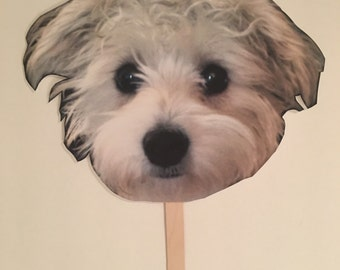 Picture on a Stick  - Dog Photo Prop - Wedding Picture - Wedding Prop - Picture Prop - Custom order - Whatever you want!