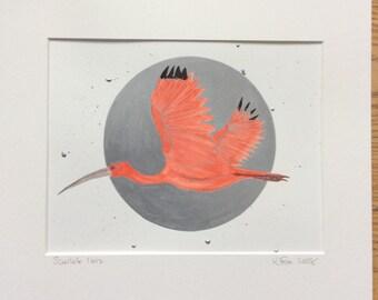 Original bird art, Mixed media bird painting , Scarlet Ibis Painting , Bird Lovers Gift, Affordable Art, Unique Gift