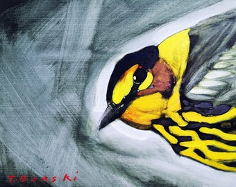 Cape May warbler bust