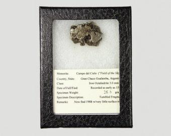 Meteorite from Campo del Cielo, Argentina