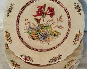 Copeland Spode England Rosalie Bread and Butter Plate, Vintage English China, Vintage Bread and Butter Plates, Rosalie Style China, Flowers